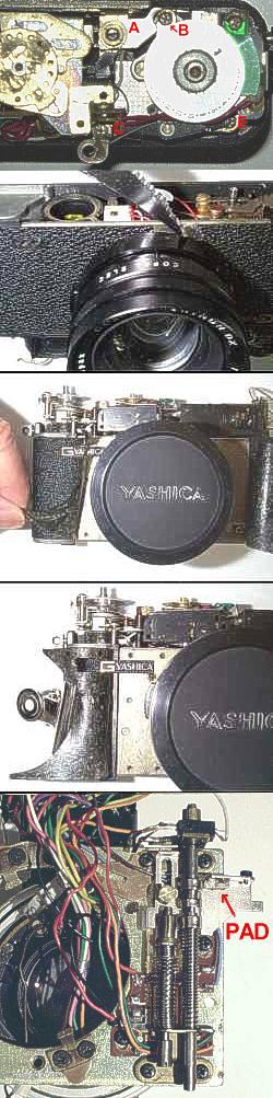 Yashica Guy 5